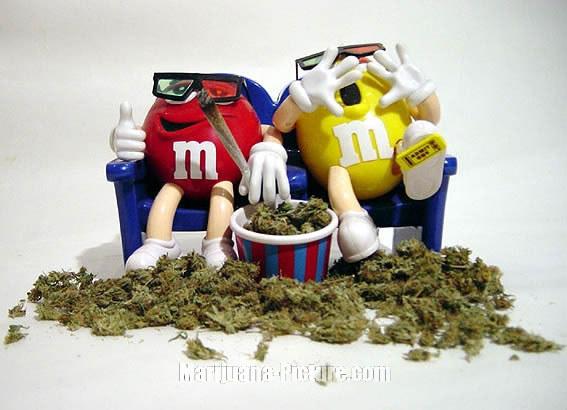 Funny Marijuana Pictures