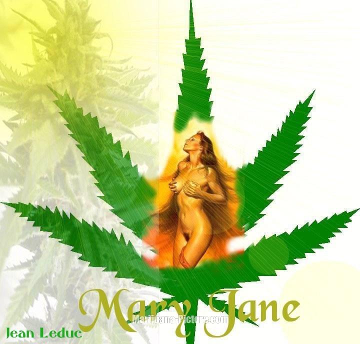 mary jane the devil weed Подпишись на нас © copyright shazam entertainment limited 2002-2018 все права защищены.